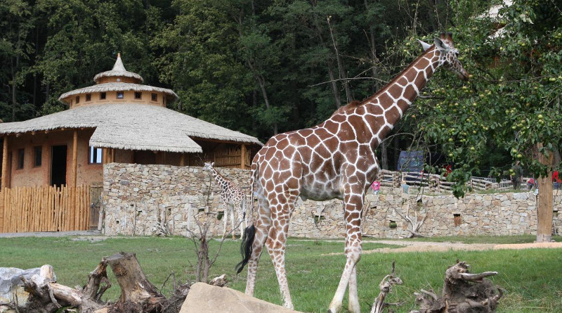 Zoo Jihlava